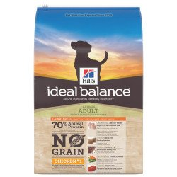 Ideal Balance Large No Grain Poulet