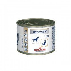 VDIET DOG/CAT RECOVERY 12 BT 195 G